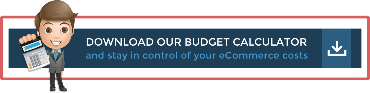 Download our eCommerce Budget Calculator